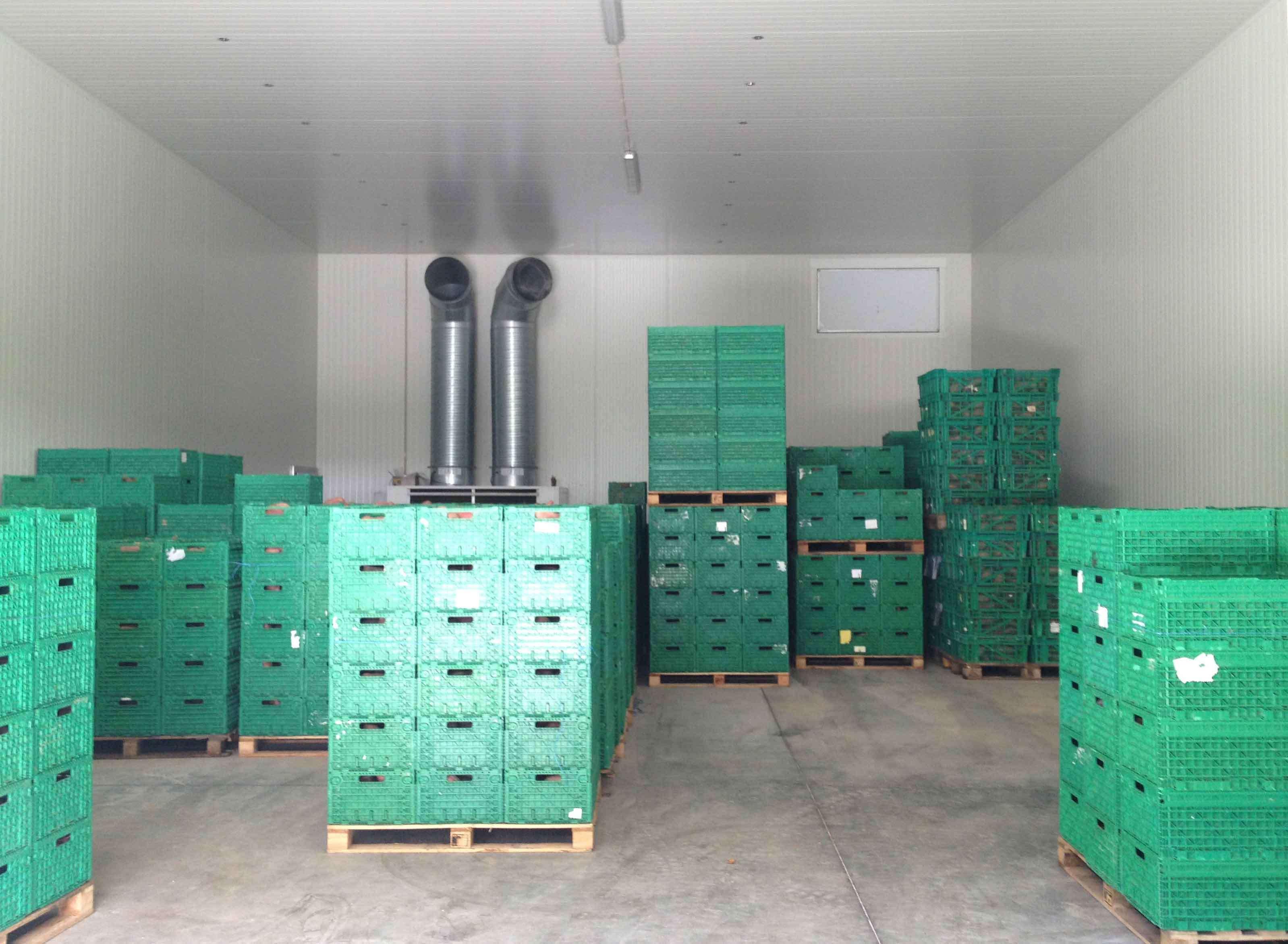 hale metalice pentru depozitare legume