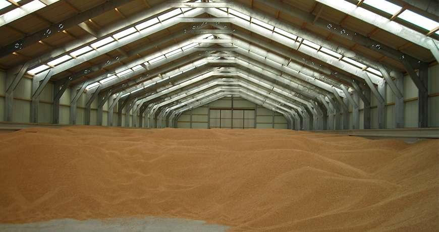 hale Agricole de depozitare cereale