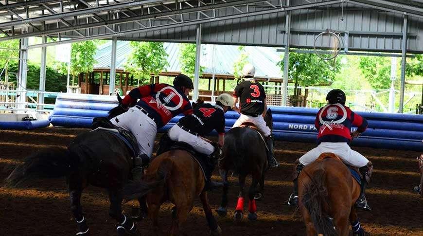 horse arenas equestrian steel buildings riding