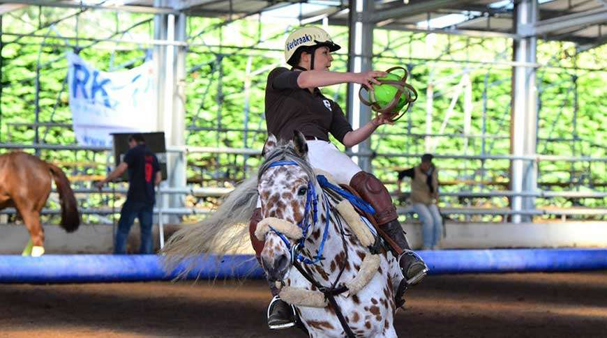 horse arenas metal steel riding school PESB