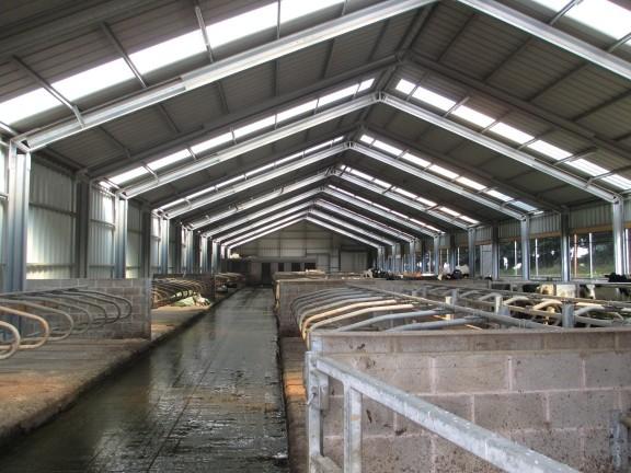 ferme de vite din oțel