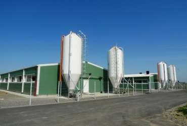 hale metalice agricole Frisomat