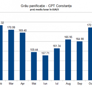 situatie-preturi-grau-panificatie-constanta-2020